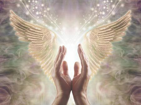 Sintiendo la energía angelical: manos masculinas que se extienden hacia un hermoso par de alas de ángel doradas con luz blanca y destellos que fluyen entre ellas, sobre un fondo de formación de energía cálida y etérea