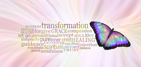 The Buttefly Symbolises Transformation  -  a multicoloured butterfly beside a TRANSFORMATION word cloud  against a radiating pale pink background Reklamní fotografie - 121700969