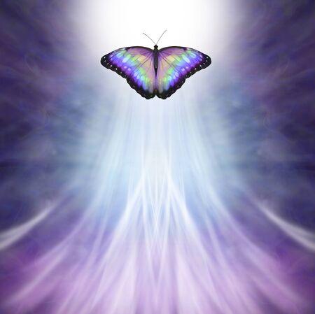 Mehrfarbiger Schmetterling, der ins Licht übergeht - Metapher für den Tod, ein mehrfarbiger Schmetterling, der sich hellem weißem Licht auf lila blauem Hintergrund nähert und nach oben fließendes weißes Licht mit Platz für Kopien Standard-Bild
