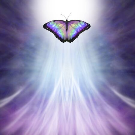 Multicoloured Butterfly Passing into the Light - metaphor for death, a multicoloured butterfly approaching bright white light on a purple blue background and upwardly flowing white light with space for copy Imagens