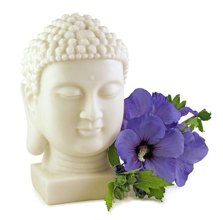 Buddha and Blue Hibiscus - Buddha Statue head and Blue Hibiscus Flower isolated on white background Imagens