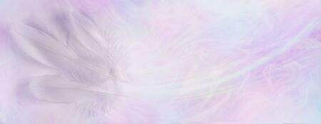 Delicate ethereal triple white feather background banner - three long white bird feathers on left against pale pink and blue gaseous ethereal background with copy space