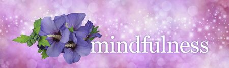 Focus on flowers for a perfect Mindfulness moment - blue hibiscus flower heads beside the word MINDFULNESS on a wide pink sparkling background