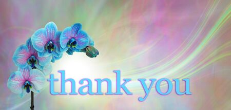 Blue Orchid Floral Thank you Message  Banner - blue and pink orchid flower heads on a flowing green and pink background with copy space Foto de archivo