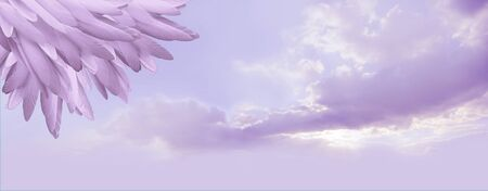 Angel feather message background banner - a pile of random long lilac feathers in left corner against a lilac blue romantic sky background with copy space Stock Photo