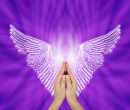 Angelic Therapist seeking Angel Guidance - Female hands in prayer position with a pair of pale lilac Angel wings against a purple voilet energy formation background and copy space