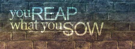 You reap what you sow message banner - blue brown rustic brick wall with stenciled words saying you REAP what you SOW and copy space Foto de archivo