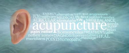 Ear Acupuncture Word Cloud banner - human ear isolated on left with an ACUPUNCTURE word cloud on right side against a sound wave effect jade blue green background Standard-Bild