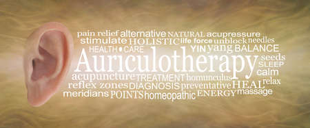 Auriculotherapy Word Cloud banner - human ear isolated on left with an AURICULOTHERAPY word cloud on right side against a sound wave effect golden yellow background Standard-Bild