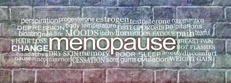 Words associated with Menopause Word Cloud - blue grey and red brickwall background with a MENOPAUSE word cloud