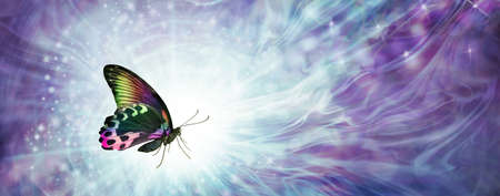 Multicoloured Butterfly Message Background Banner - beautiful colourful butterfly against a pale blue purple gaseous wispy energy background with white light and copy space Zdjęcie Seryjne