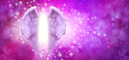 Purple Pink Sparkle Angel Wings Message Board - pair of Angel wings on left side with random white and pink sparkles on a vibrant pink purple bokeh background and copy space