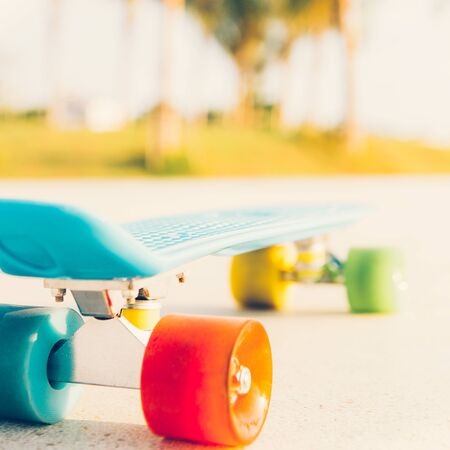 blue penny board with multicolored wheels stands on the track in front of the palm trees. rear view