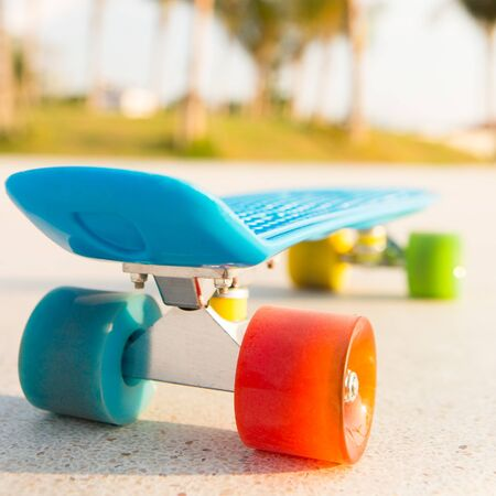 rear view of the blue penny board with bright multicolored wheels stands on the track in front of the palm trees