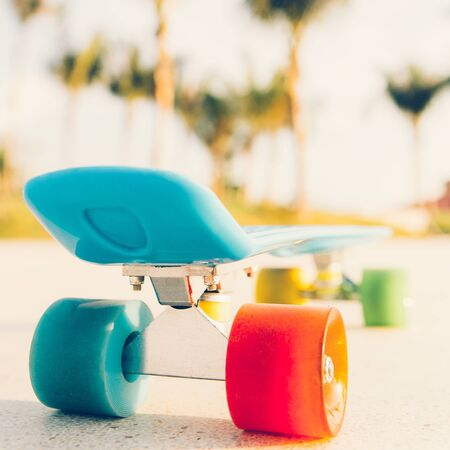 rear view of the blue penny board with multicolored wheels stands on the track in front of the palm trees Stock Photo