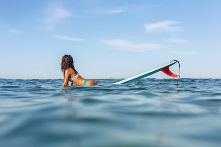 surfboard fin: Beautiful surfing girl in sexy bikini sit on a front of big longboard surfboard board so we see one single fin of her surf on sunrise or sunset. Modern active sport lifestyle and summer vacation.