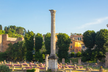 Ancient ruins of Forum in an evening sunset in Rome, Italy
