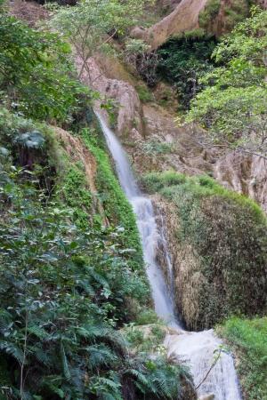 Deep forest Waterfall in Kanchanaburi, Thailand Stock Photo - 17157155
