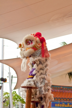 BANGKOK,THAILAND-JANUARY 20:  lion dance dressing during parade in Chinese New Year Celebrations on January 20, 2013 in BANGKOK