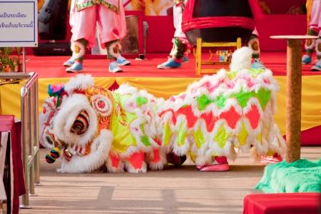 BANGKOK,THAILAND-JANUARY 20:  lion dance dressing during parade in Chinese New Year Celebrations on January 20, 2013 in BANGKOK