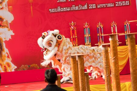 BANGKOK,/THAILAND-JANUARY 20:  lion dance dressing during parade in Chinese New Year Celebrations on January 20, 2013 in BANGKOK Stock Photo - 17713255