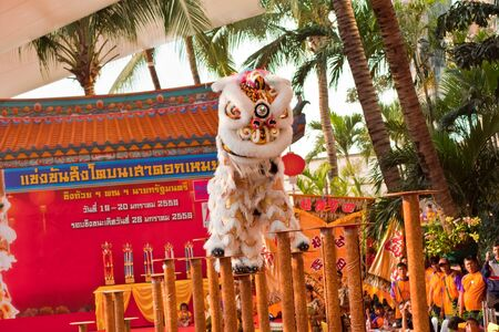 BANGKOK,/THAILAND-JANUARY 20:  lion dance dressing during parade in Chinese New Year Celebrations on January 20, 2013 in BANGKOK Stock Photo - 17713343