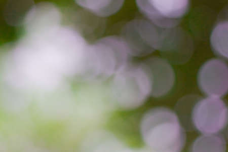 bokeh blurred out of focus background Stock Photo - 19320829