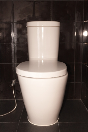 hemorrhoid: White toilet bowl, Stock Photo