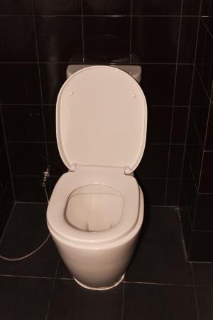 White toilet bowl, Stock Photo - 20330186
