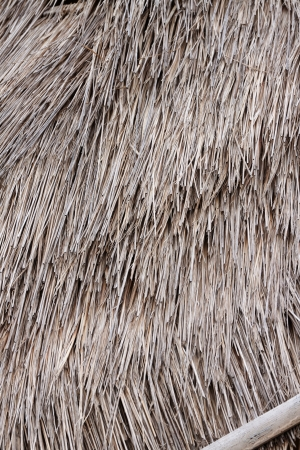 Thatched roof on beach Stock Photo