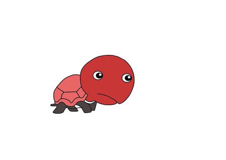 imagenes vectoriales: Im�genes de la tortuga de la historieta del vector