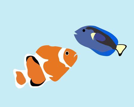 false percula clownfish: Clownfish
