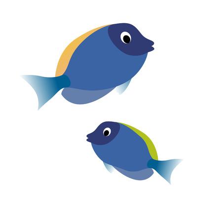 molluscs: vector fish