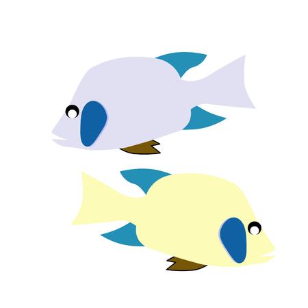 bream: vector fish