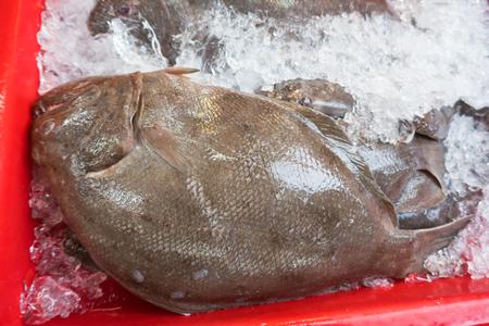 seafood market in thailand Reklamní fotografie