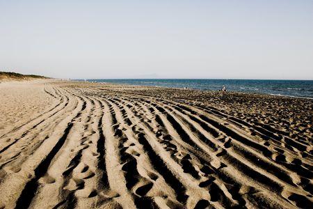 beachcomb: Cleaned beach