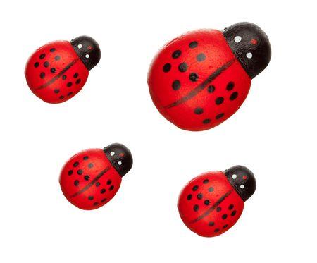 ladyfly: ladybugs isolated, family concept