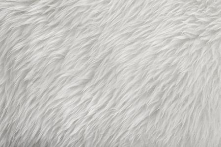 weißes Fell Textur Hintergrund