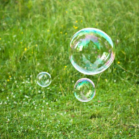soap bubble: soap bubbles against the grass background