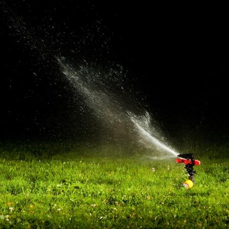 irrigation field: lawn sprinkler spraying water over green grass at night