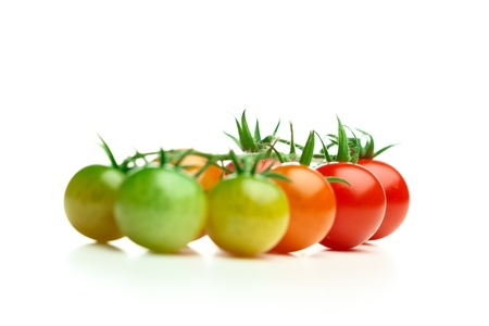 ripe and unripe cherry tomatoes isolated on white photo
