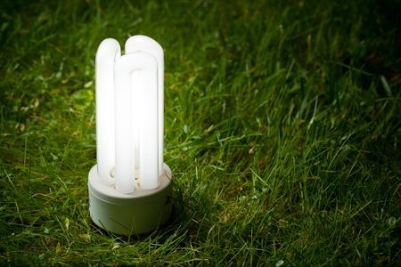 low light: energy saving lamp on the green grass Stock Photo