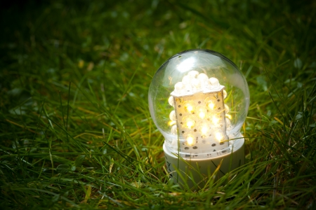 bulb fields: led lamp on the green grass