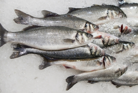 chilled: fresh fish on ice at market Stock Photo