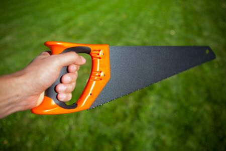 handsaw: hand saw against green grass background Stock Photo