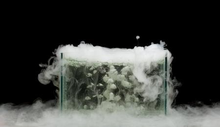 vapore acqueo: ghiaccio secco bollente con vapore Archivio Fotografico