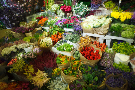 multitude: multitude of color flowers at the wholesale market