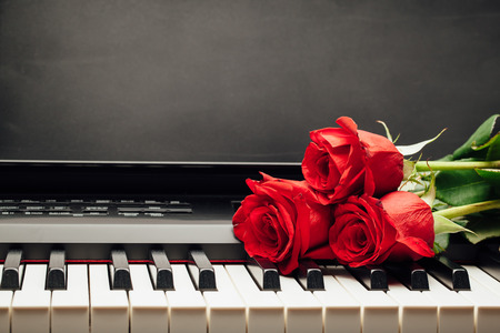 red roses on piano keys with copy-space Banco de Imagens