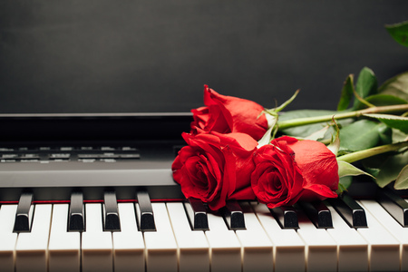 copyspace: piano keys and red rose with copy-space