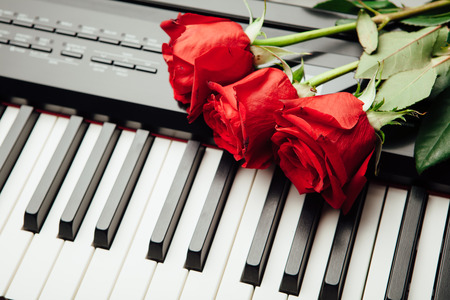 rosas rojas: teclas de piano y rosas rojas